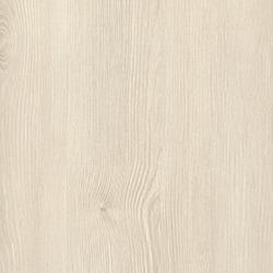 Polar Aland Pine